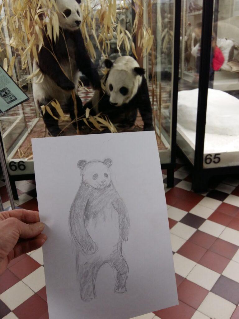 Живопись и рисунок для детей от 8 лет (107)