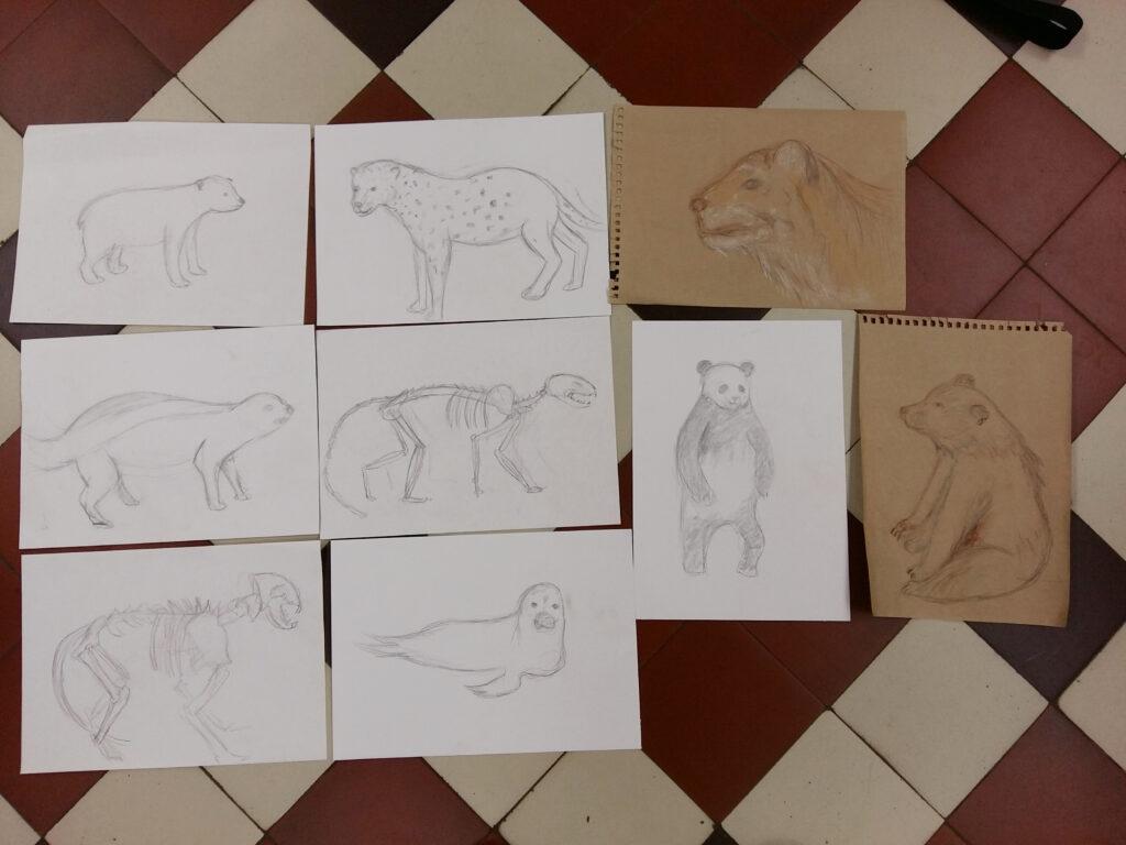 Живопись и рисунок для детей от 8 лет (115)