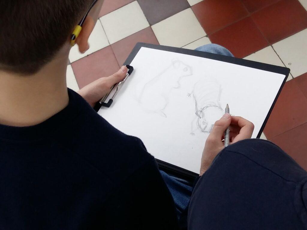 Живопись и рисунок для детей от 8 лет (83)