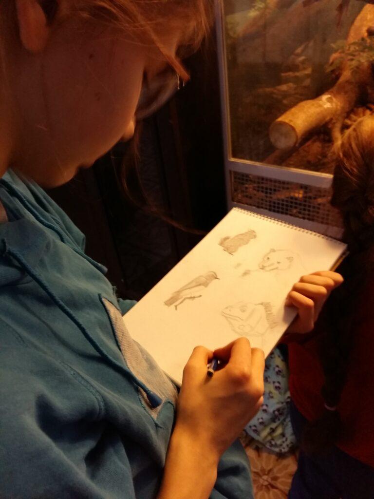 Живопись и рисунок для детей от 8 лет (85)