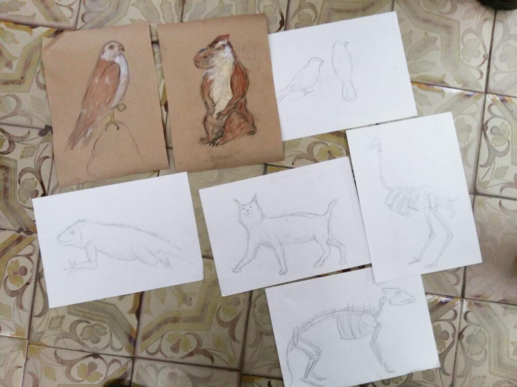 Живопись и рисунок для детей от 8 лет (87)