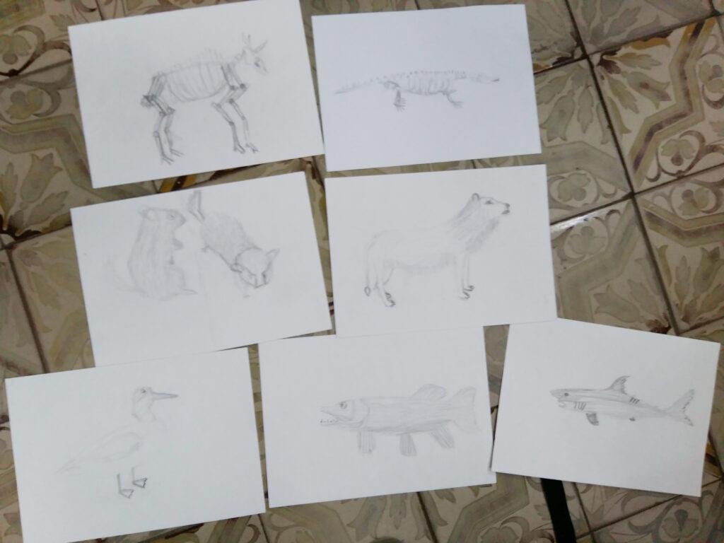 Живопись и рисунок для детей от 8 лет (93)