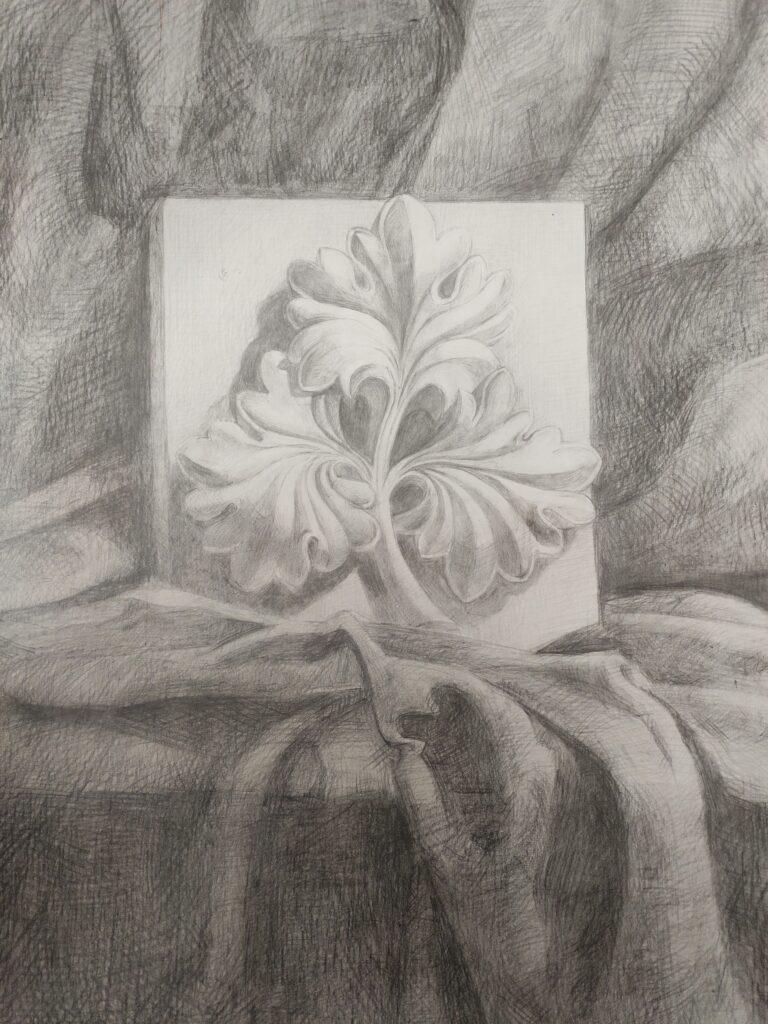 Курс рисунка (6)